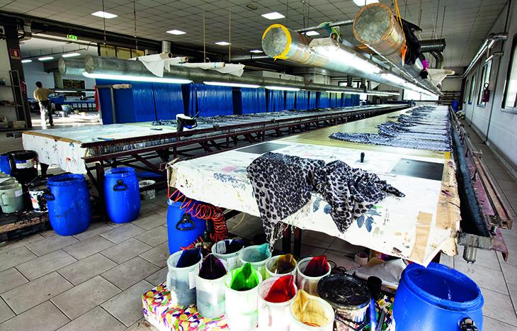 Roberto Cavalli print shop Florence headquarter