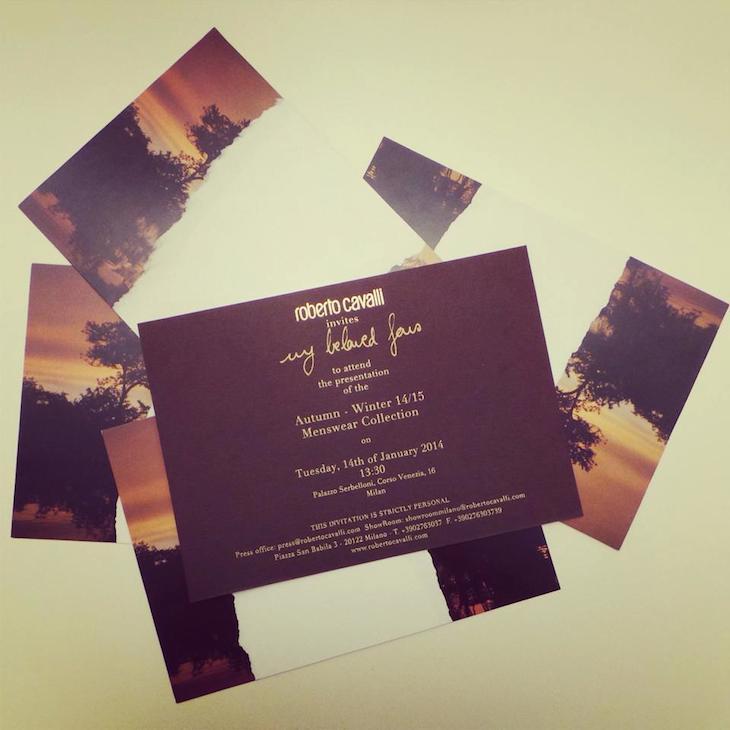 Invite Roberto Cavalli Menswear FW 14-15