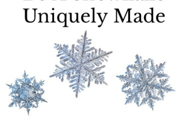 Feb 21 – Be A Snowflake