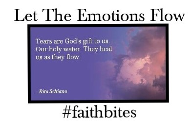 Read more about the article May 27 – Tears Are A Gift