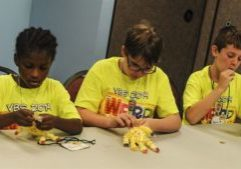 vbs-activity