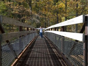 Cowans Gap bridge