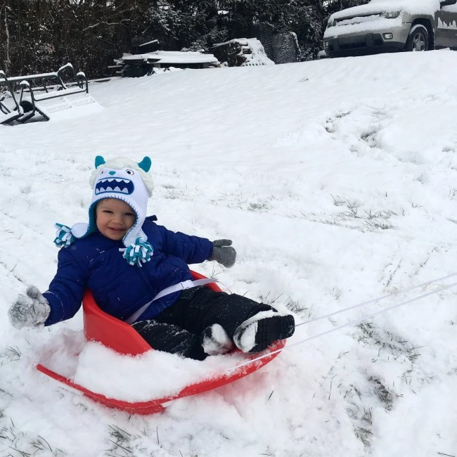 asher waves on sled