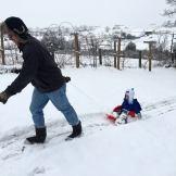 daddy pulling asher sledding