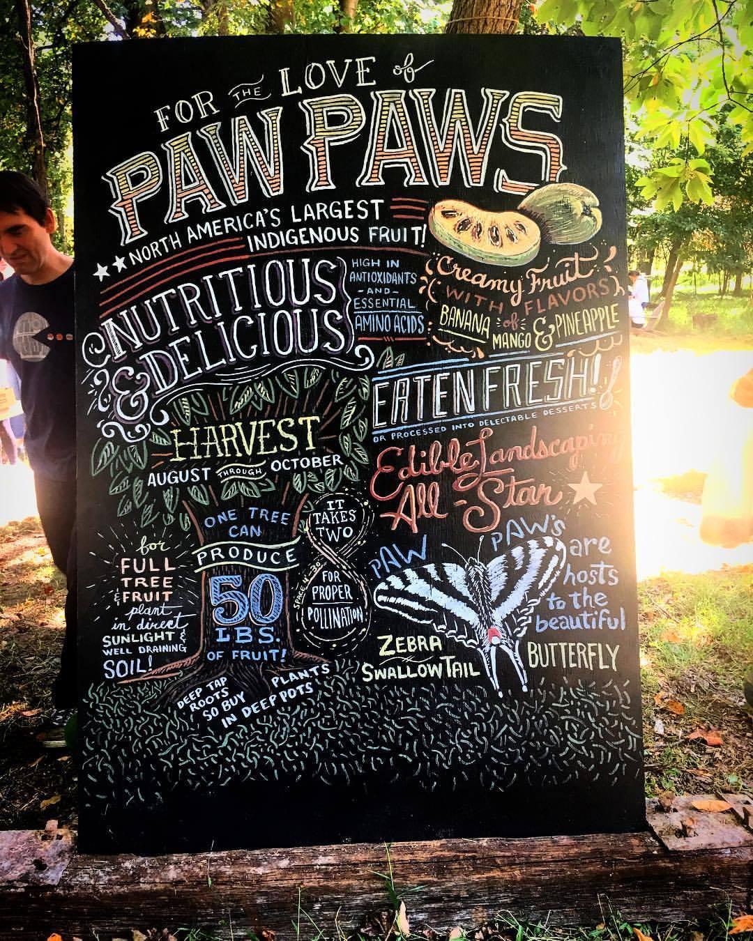 pawpaw