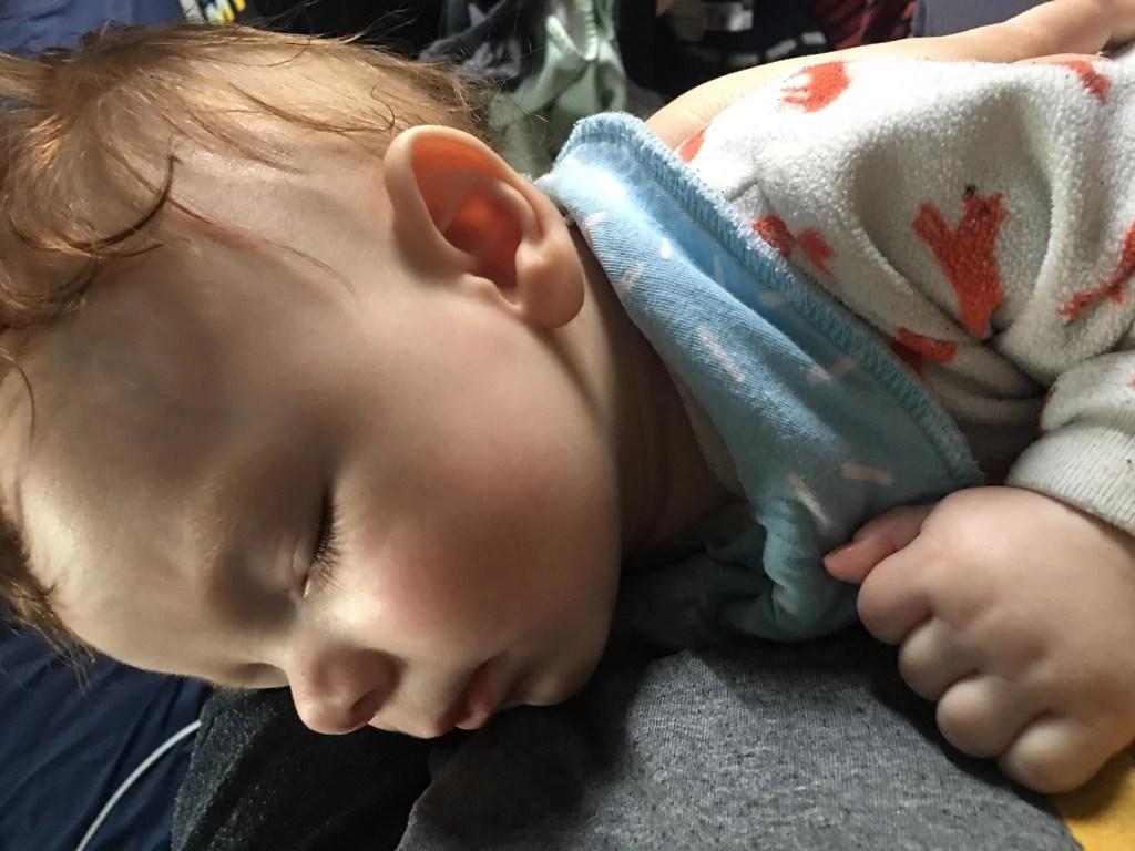 Shiloh sleeps