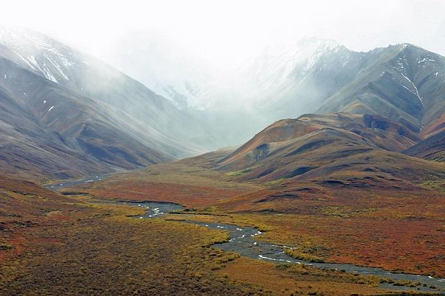 living in the wilderness on kodiak island archives robin