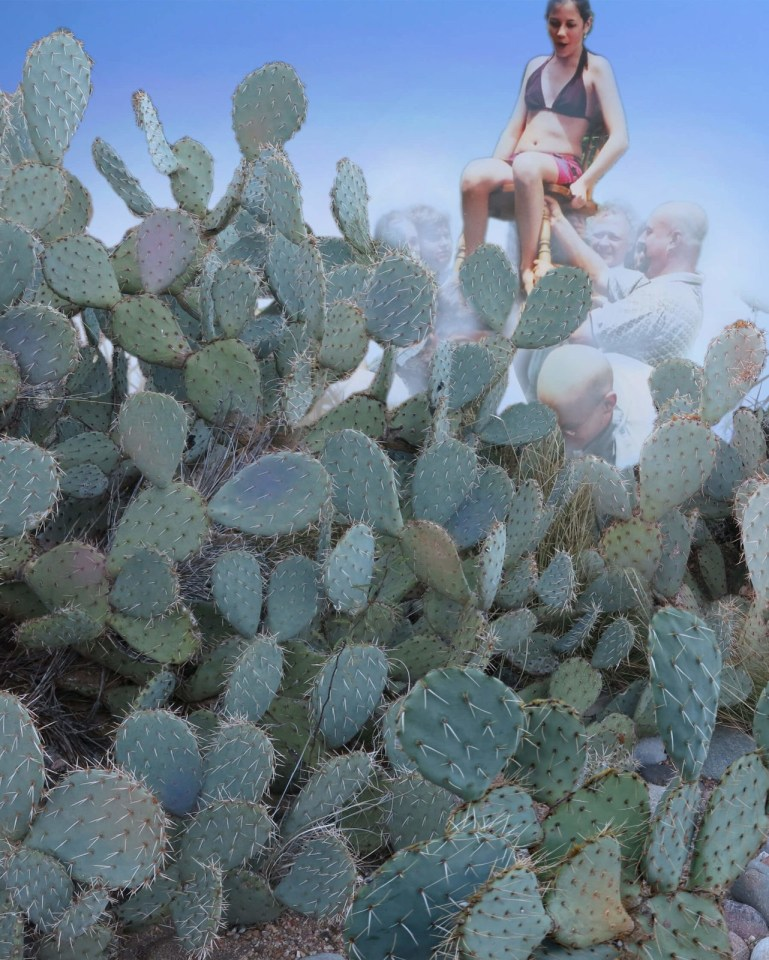 Robin Botie of Ithaca, New York, photoshops saguaro cactus and her young daughter being lifted high in her chair.