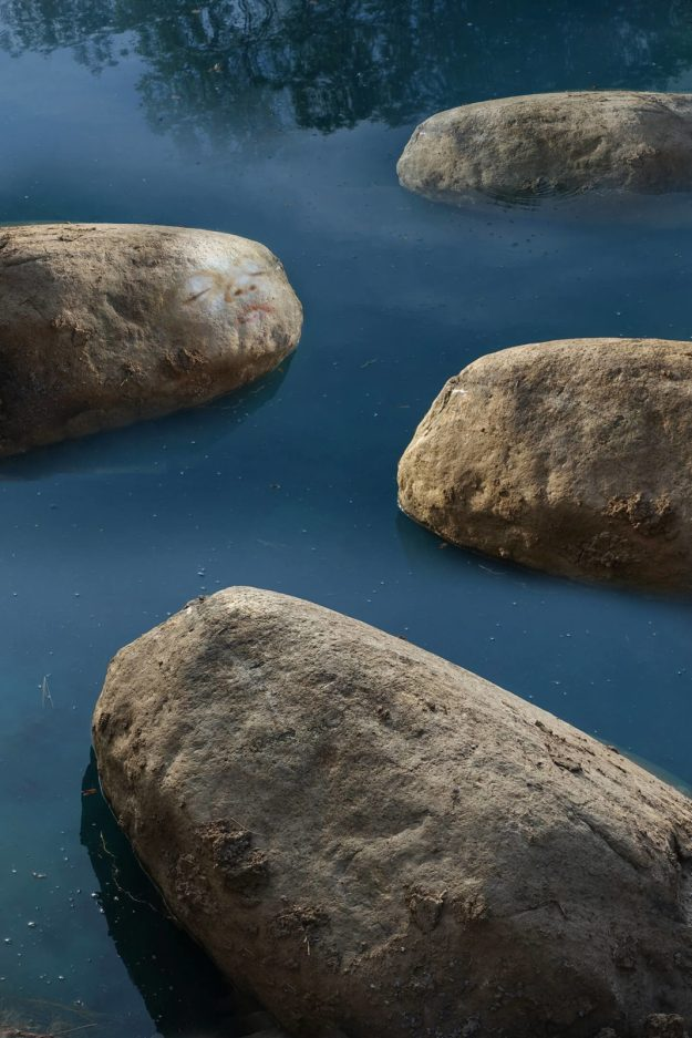 Robin Botie of Ithaca, New York, photoshops boulders in her pond.