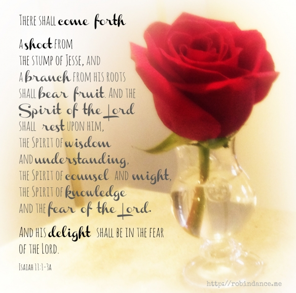 Scripture reading for Advent