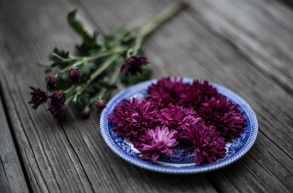 Storied Dishes || ~ a Grace Table feature ~