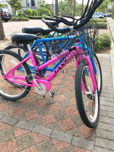 Pink and Blue Bikes