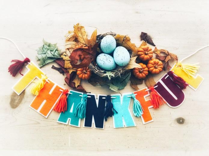 Thankful nest
