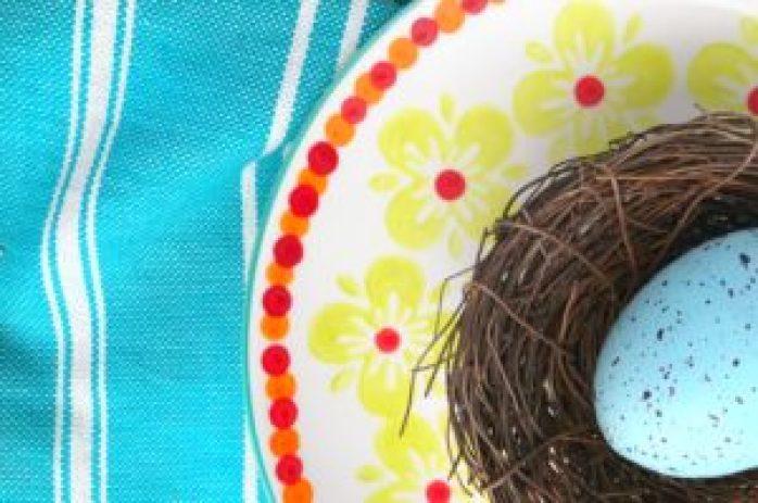 Turquoise Nest