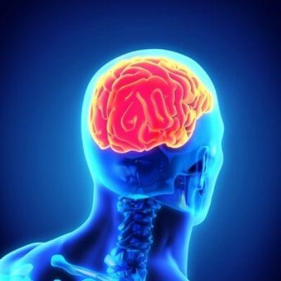 West Virginia Brain Injury Lawyers   Morgantown TBI Attorney