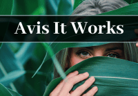 avis It Works
