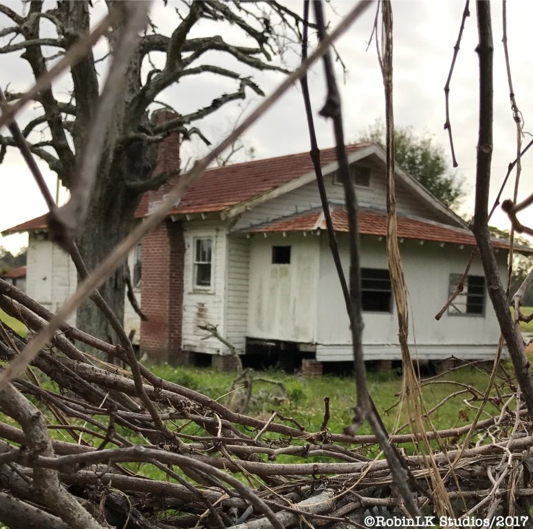 Old Florida home, abandoned