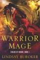 Warrior Mage, by Lindsay Buroker