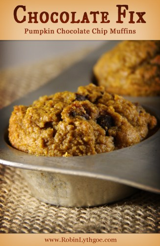 CHOCOLATE FIX: Pumpkin Chocolate Chip Muffins — Autumn is pumpkin time, and time for Pumpkin Chocolate Chip Muffins! This particular recipe is pretty healthy, so it gets double points in my book.