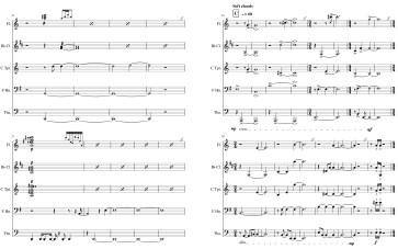 Transcription of satellite data for 5 wind instruments