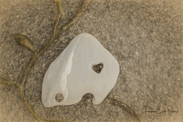 Heart in Rock © Robin E. H. Ove All Rights Reserved
