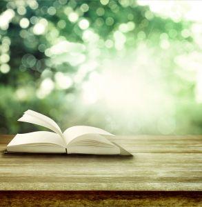 BAC Book