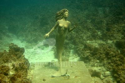 Mermaidatsunsethouse