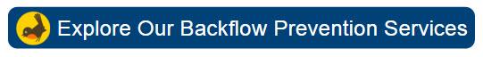 Robinson Backflow