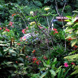 Kumara Sakti garden