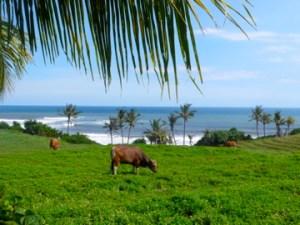 Balian Beach, Bali