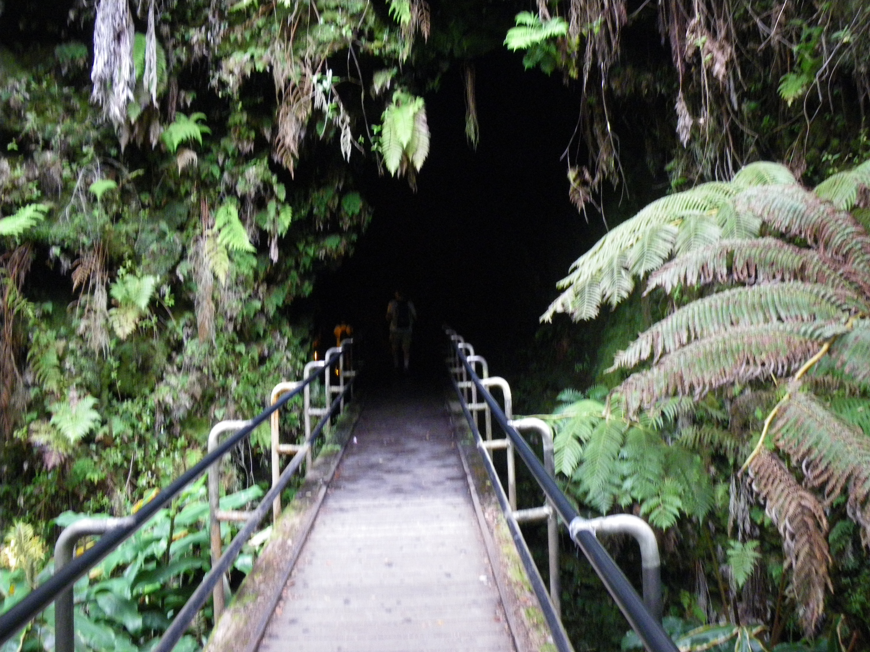 Entrance to Thurston Lava Tube.  How amazing to walk through a fern forest to this huge tube imagining lava flowing from the volcano and through the tube.