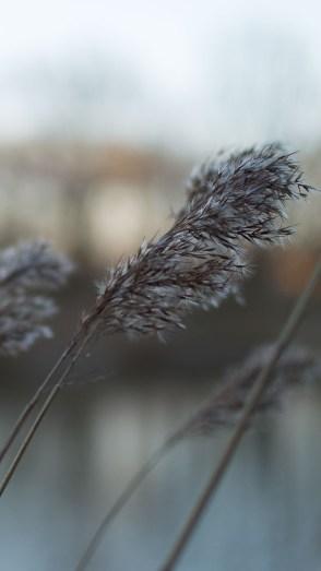 Photography: 8