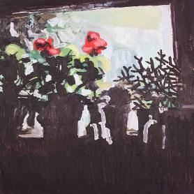 Mum's geraniums