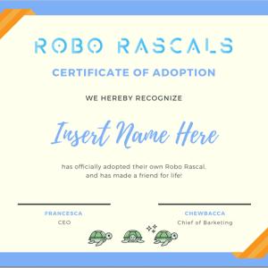 Robo Rascals | Roomba® Covers | iRobot Skins®