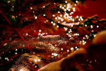 Kerstlampjes in kerstboom met sneeuw