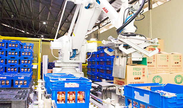 ABB robot hatches 30 per cent more eggs for Singapore egg farm