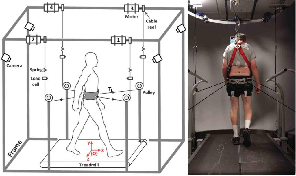 Robotic device developed by Columbia University 'improves balance and gait' in Parkinson's disease patients