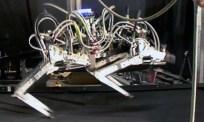 Cheetah är världens snabbaste robot på ben