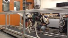 MIT utvecklar också robotgepard åt DARPA