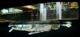 Veckans videor: Godis, rymden, ROSCon 2012, axelrobot m.m.