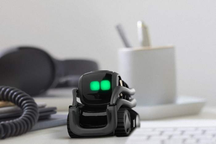 anki_vector_office