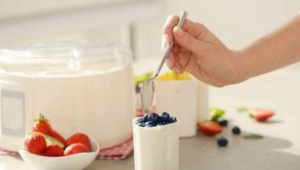 Comment bien choisir sa yaourtière