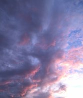 Pink Storm 2