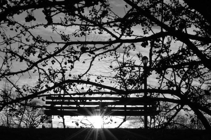 Rainey Park, Queens