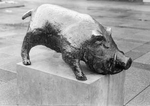 Karel Pelgrom - Het Zwijn (foto Archief Peter Zuiderent)