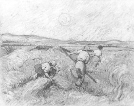 fig. 3 Harvest in front of the Alpilles