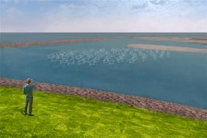 'Blije vissen' (foto De Nieuwe Afsluitdijk)