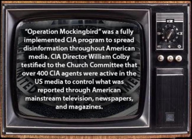 Operation Mockingbird (foto Tom Heneghan Briefings)
