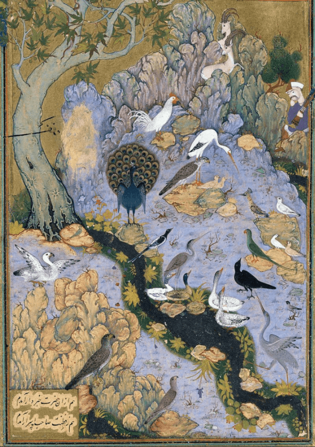 Scene from The Conference of the Birds in a Persian miniature, the hoopoe, center right, instructs the other birds on the Sufi path (foto Wikipedia)