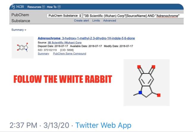 Follow The White Rabbit (foto Wuhan Corporation:Twitter)